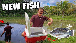 STOCKING My BACKYARD POND with NEW FISH!!!
