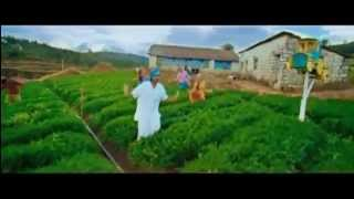 CHENTHAMARA THENO (916 ) Really Really Cute song (include mp3 link )