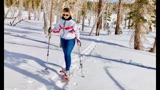 Snowshoeing in fresh snow to Mammoth Pass