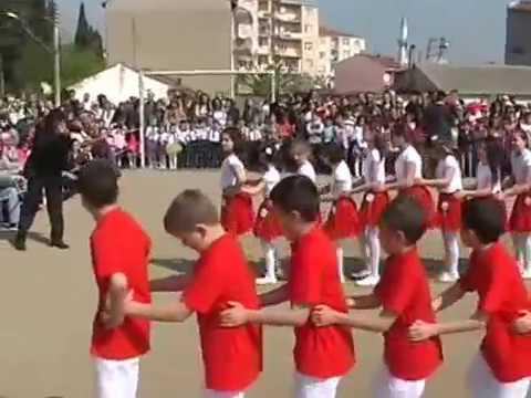 Penguen Dansı Gösterisi