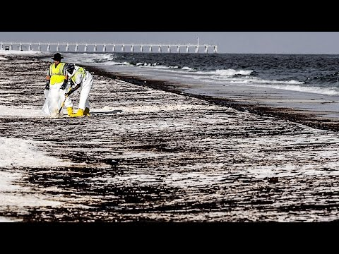 Papantonio: The Devastating Leftovers of BP's Oil Spill