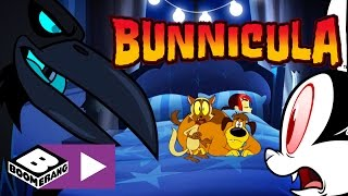 Bunnicula | Saving The Internet | Boomerang UK