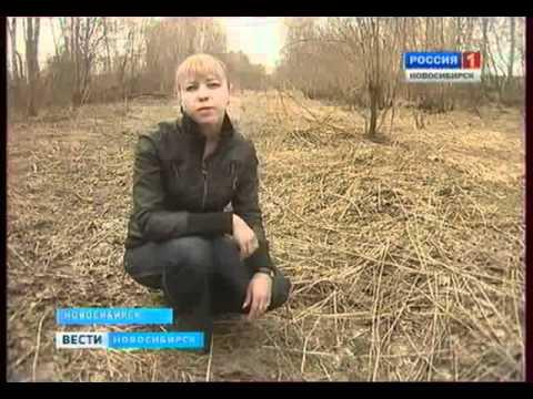 Прохожий спас ребенка от насильника. Россия-1