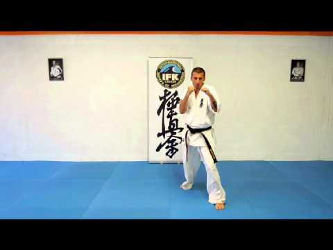 Karate Kyokushin Video Lesson 1 Image 1