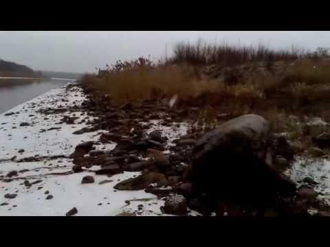 кушумский канал рыбалка 2016