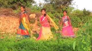 Bhel Puri Spl Video Song Aagadu Prince Mahesh Babu by Ravi Master 360p