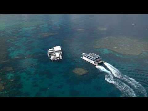 Protecting the Great Barrier Reef - Tourism