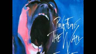 Watch Pink Floyd What Shall We Do Now video