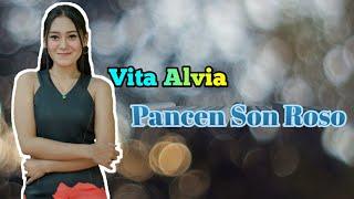 VITA ALVIA _ PANCEN SON ROSO (   )