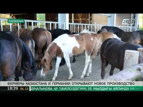 Фермеры Казахстана и Германии открывают новое производство