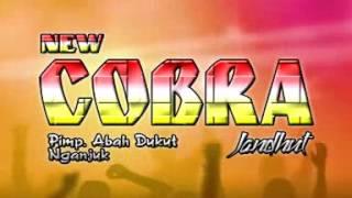 New Cobra - Tembang Tresno (Live Malang)