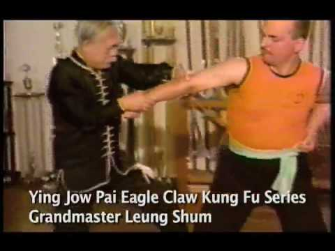 EAGLE CLAW KUNG FU - MONTAGE Image 1