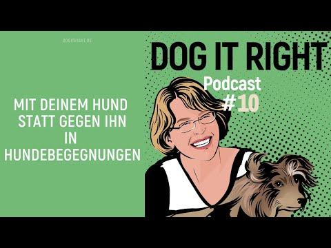 So kannst du deinen Hund in der Kommunikation unterstützen mit Maria Hense | Dog It Right Podcast