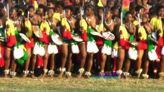 Reed Dance Ceremony   _Green All      (#21 vid- 101)