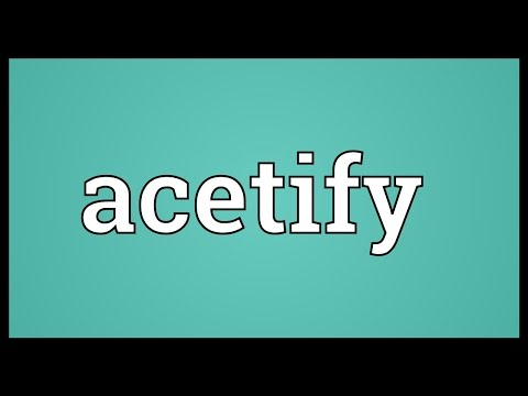 Header of acetify