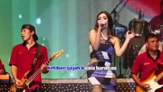 download lagu Ada Gajah Di Balik Batu - Nella Kharisma Om. gratis
