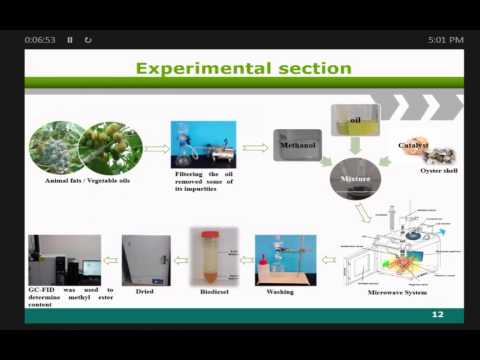 Food waste and food processsing waste for renewable energy production