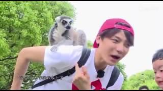 [CUT Baby let me go mùa 1] Hầu Minh Hạo có duyên với loài khỉ