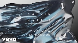 Calvin Harris Ft. All About She - Love Now
