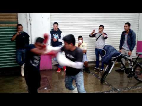 Grandes peleadores de la viga