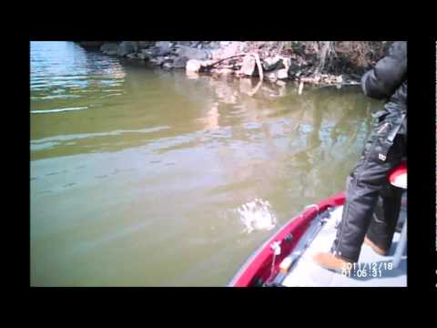 Tennessee Juggers Bass Fishing 12/17/2012.wmv