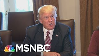 President Donald Trump: I Feel 'Somewhat Vindicated' After Intel Chief's Briefing | MSNBC