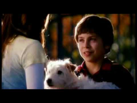 [HD] Hotel For Dogs - Official Trailer