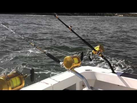 Real Caribbean BLUE MARLIN fishing on the EXTREME GAME of Puerto Rico