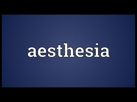 Header of aesthesia