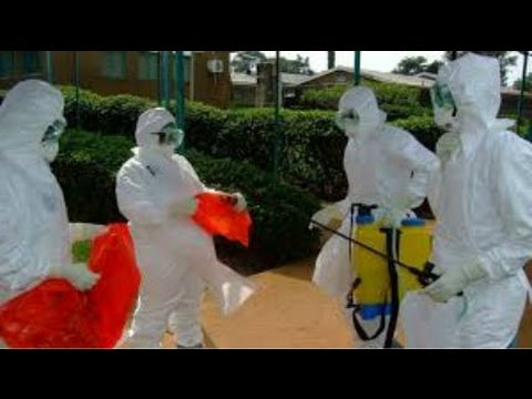 2014  Deadly Ebola Virus Outbreak Spreads Quickly