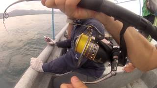 Pesca de barracuda/Fishing barracuda/Pesca barracuda/Cuda trolling
