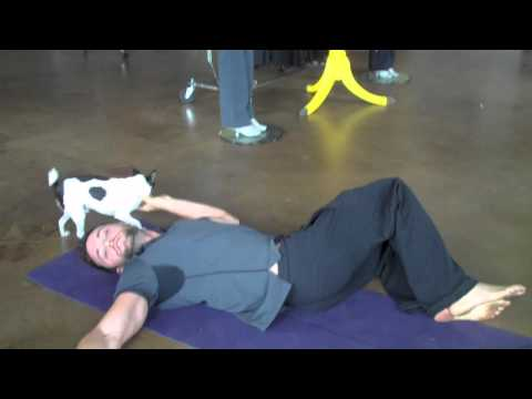 Yoga   Overweight People on Stretch 5  Supine Twist  Stretch And Strengthen Back