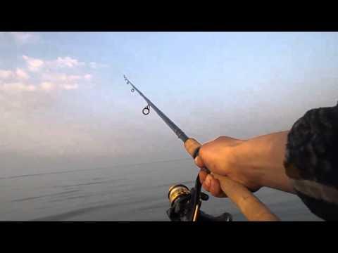 прогноз клева рыбы в курганово свердловской области
