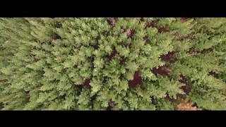 Amazing DJI INSPIRE drone footage - Cinematic