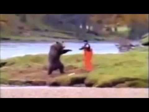 Ursul karatist / The karatist bear =)))))))))))))