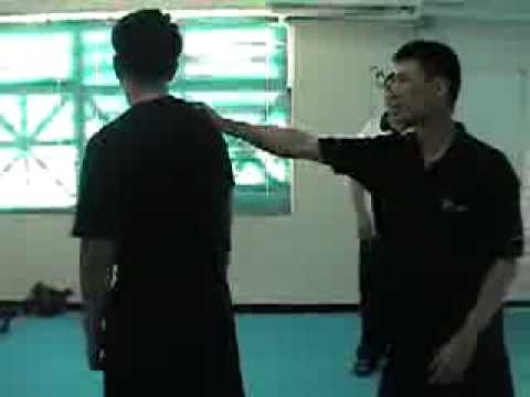 baji quan applications Image 1