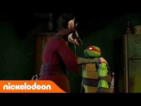 Черепашки-ниндзя | Учение Сплинтера | Nickelodeon Россия