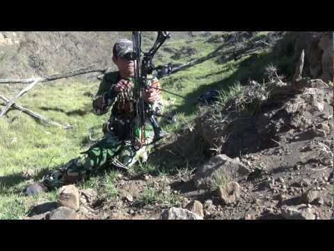 Solo Hunters Hawaii Edition! bow hunting