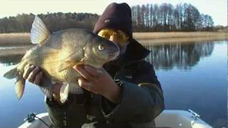 Kwietniowe leszcze cz. 1/2 | We catch bream in April - part 1/2