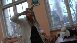 Duck Sauce - Barbra Streisand (VILO Bydgoszcz Remix)