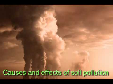 soil pollution causes and effects essay