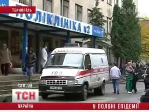 Эпидемия гриппа: Ситуация в регионах