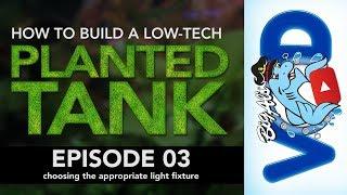 How to Build a Low-Tech Planted Tank •Episode 03 | BigAlsPets.com