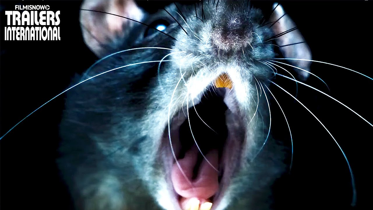 RATS Trailer - Morgan Spurlock's horrifying creature documentary