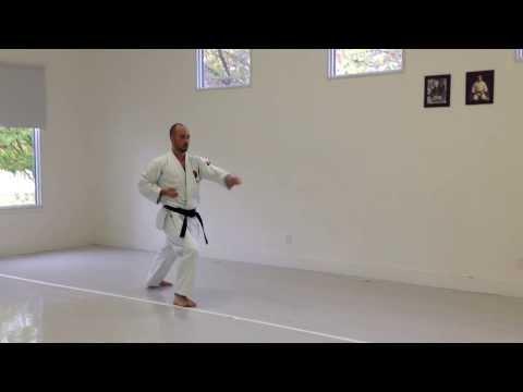 Uchi Uke Kokutsu Dachi, Gyaku Zuki Zenkutsu Dachi | Ikd Testing Syllabus Videos | Shotokan 2013 video