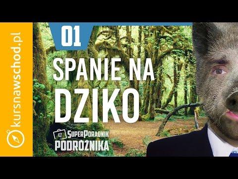 Noclegi Na Dziko SPP 01