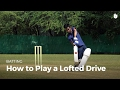 Download How to Play a Lofted Drive   Cricket in Mp3, Mp4 and 3GP