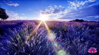 Louise Hay  Best  Morning Meditation   Guided Meditation and Affirmations