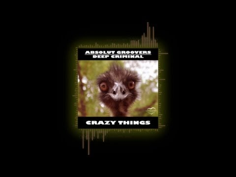 Crazy Things (Original Mix) - Absolut Groovers, Deep Criminal