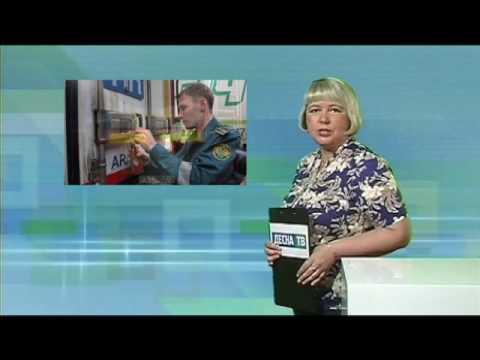 Десна-ТВ: День за Днём от 29.07.2016